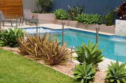 Swimming pool & spa - Forestville
